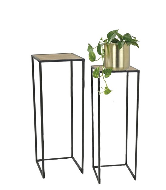 Set of 2 Wood and Metal Consoles