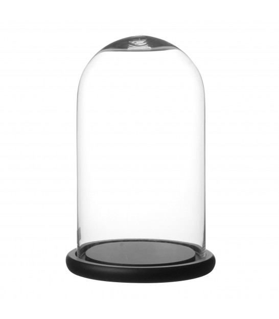 Glass Bell with Black Wood Socle