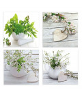 Set of 4 Pictures Flowers