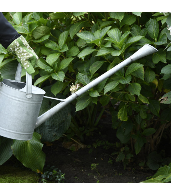 Interior Watering Can Transparent Glass - 1.4L