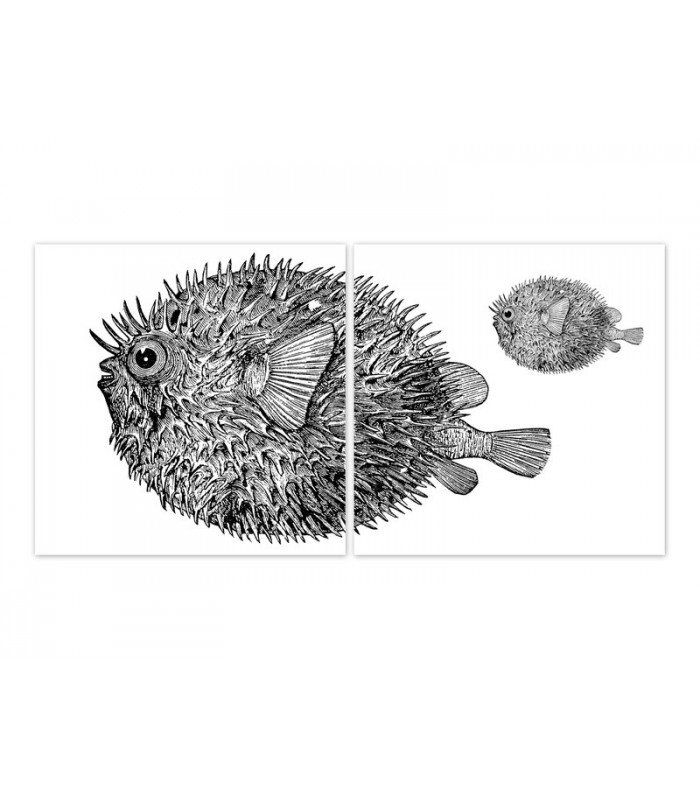 Stickers Pour Carrelage De Cuisine Ou Bain Blowfish - Wadiga.Com